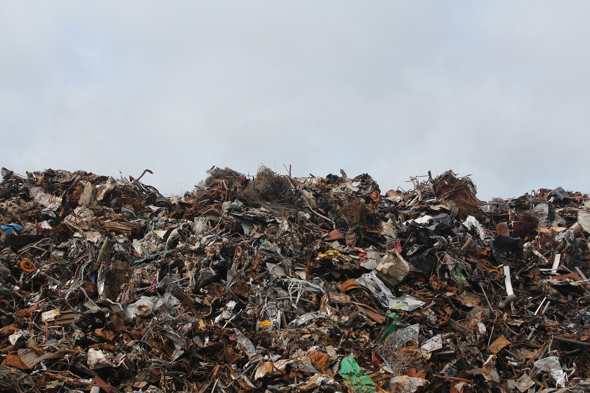 go green - reduce disposal