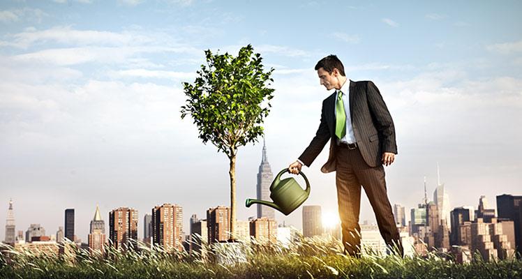 retailers go green